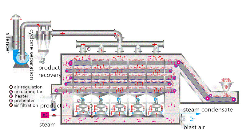 structure of the mesh belt dryer