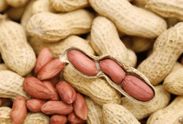 Nutritious peanuts