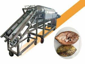 cocoa pod splitting machine