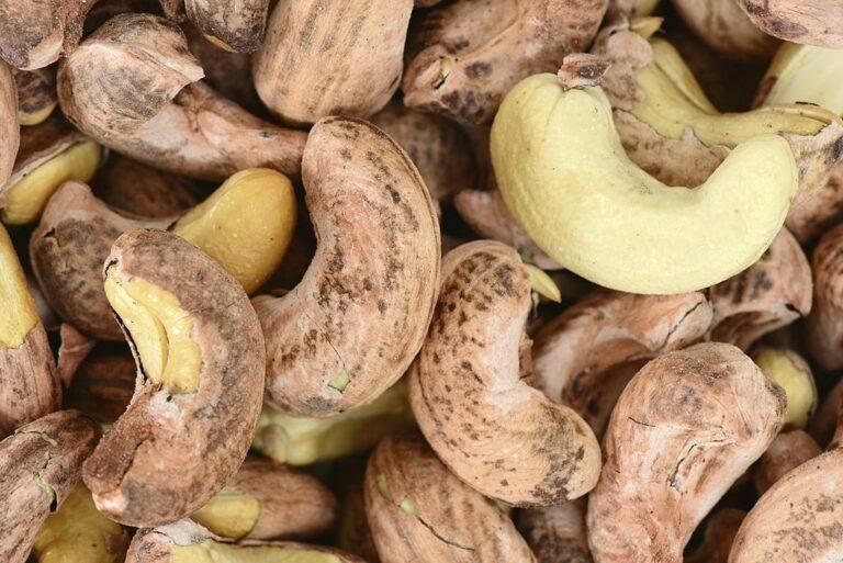 cashew peeling