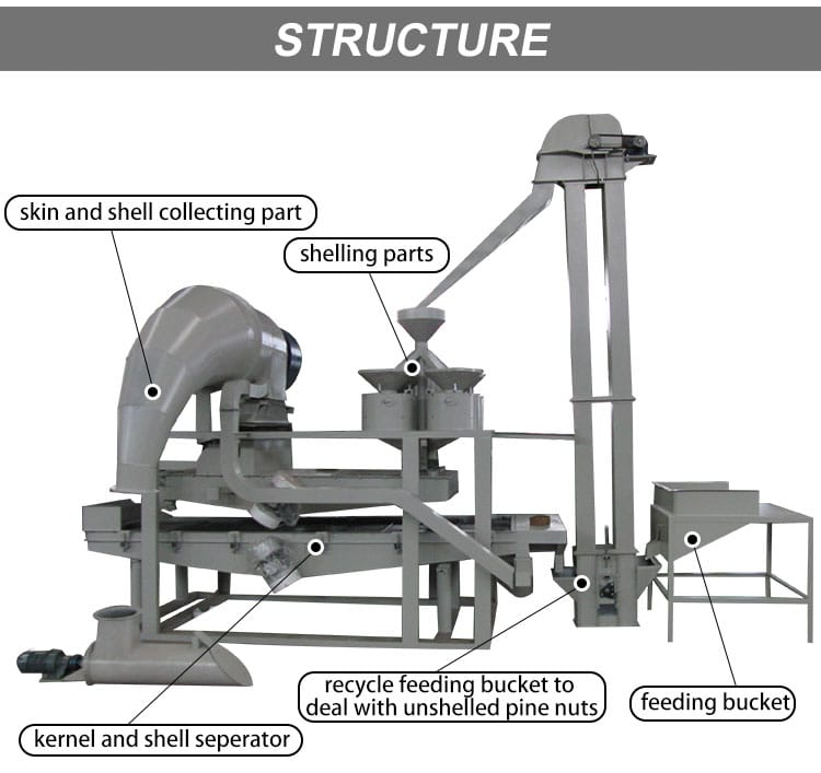 Pine nut peeling and separating machine