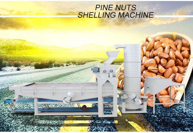 pine nut shelling machine