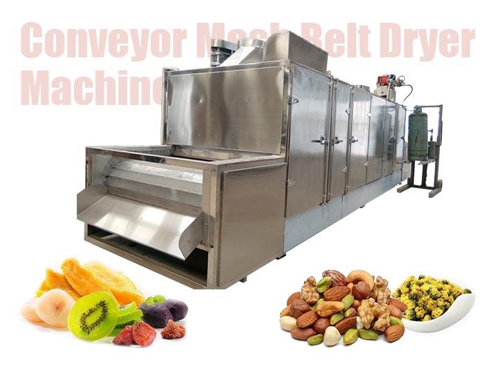 Mesh Belt Dryer Machine