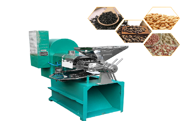 Screw oil press for seeds